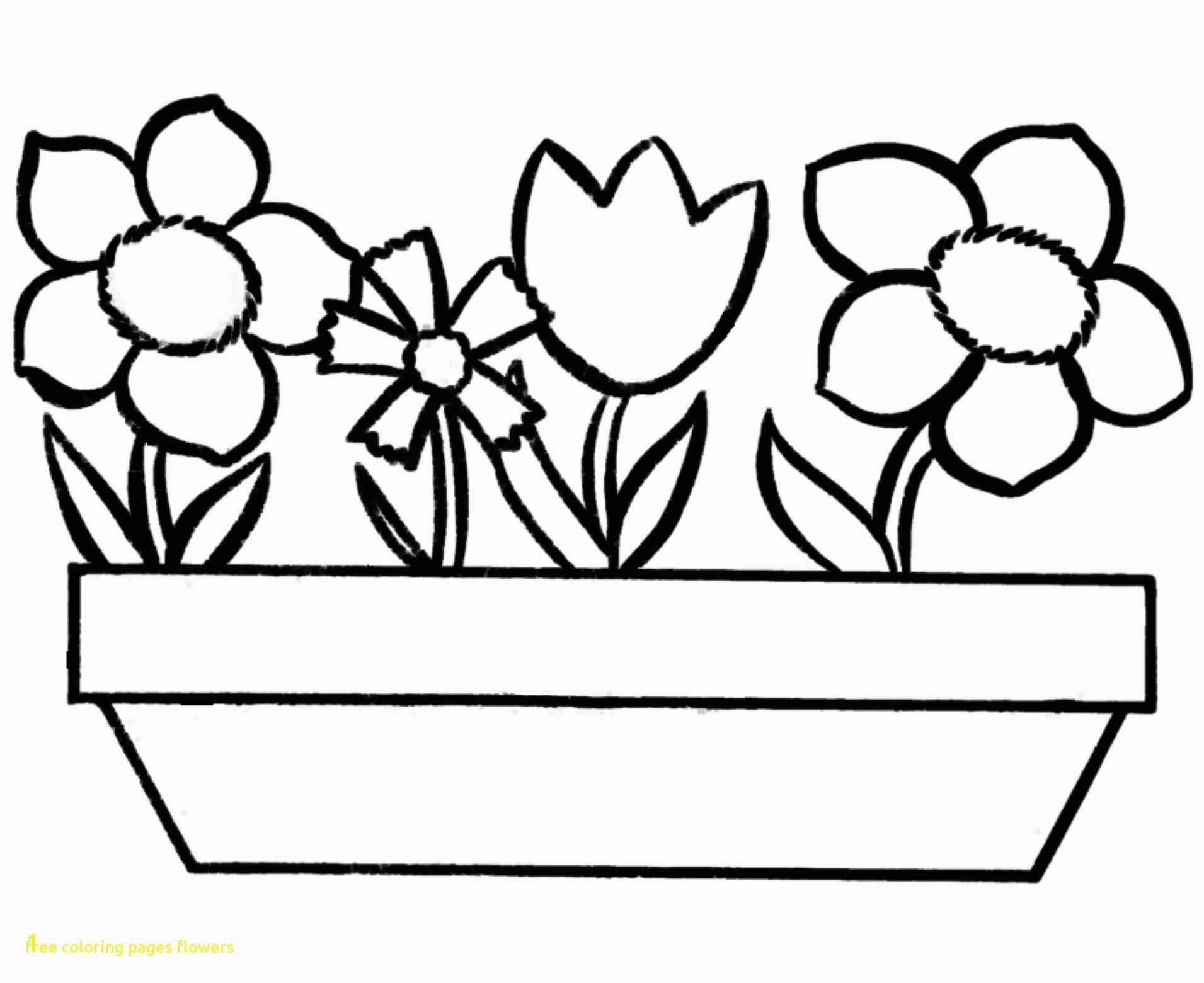 Flowers Coloring Pages Printable New Flower Caudata Page