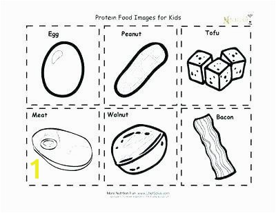 Food Groups Coloring Pages for Preschoolers Awesome Food Group Coloring Pages Od Group Pyramid Coloring Page