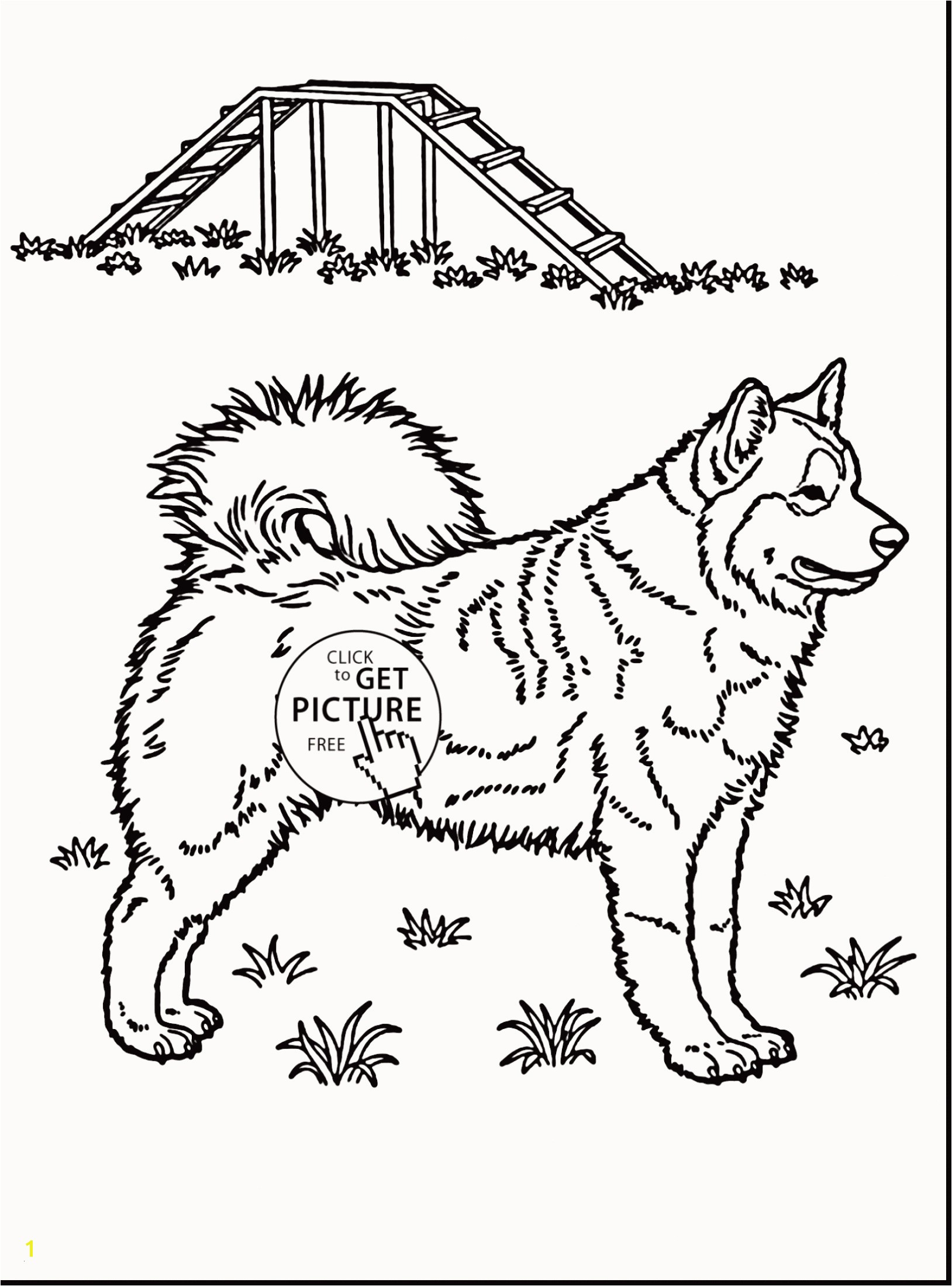 Coloring Pages Horses Free Awesome Husky Coloring Pages Beautiful Husky Coloring 0d Free Coloring Pages