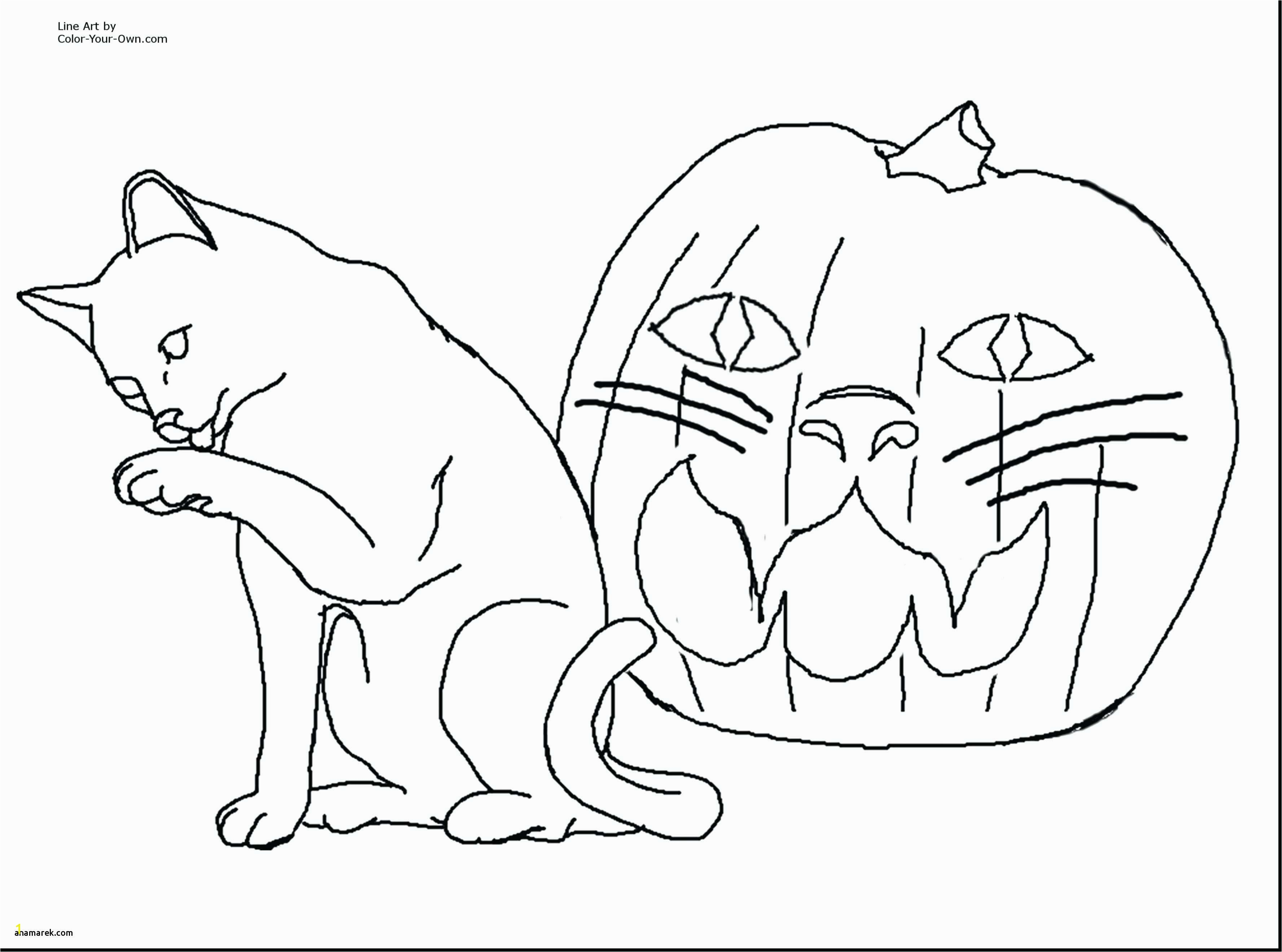 Free Printable Cat and Dog Coloring Pages Cool Coloring Sheets for Boys Download Cat Coloring Pages Free