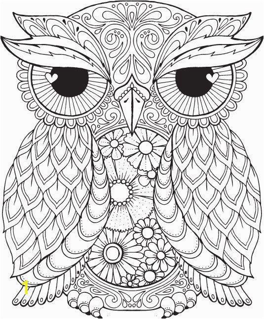 លទ្ធផល រូបភាព សម្រាប់ best owl coloring pages