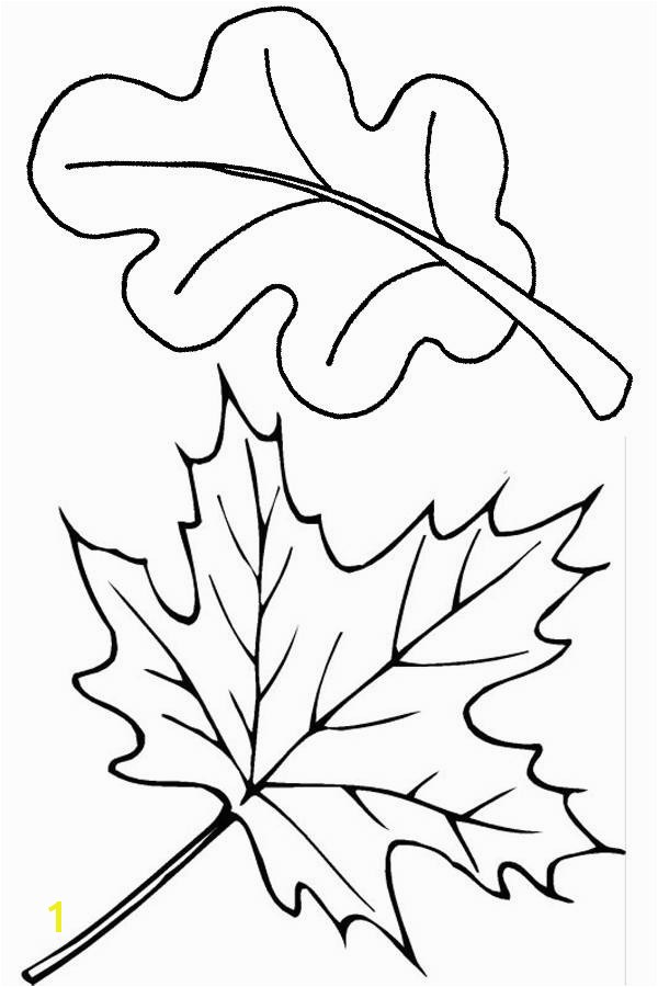 25 New Fall Leaf Coloring Pages Ideas Coloring Pages Leaves