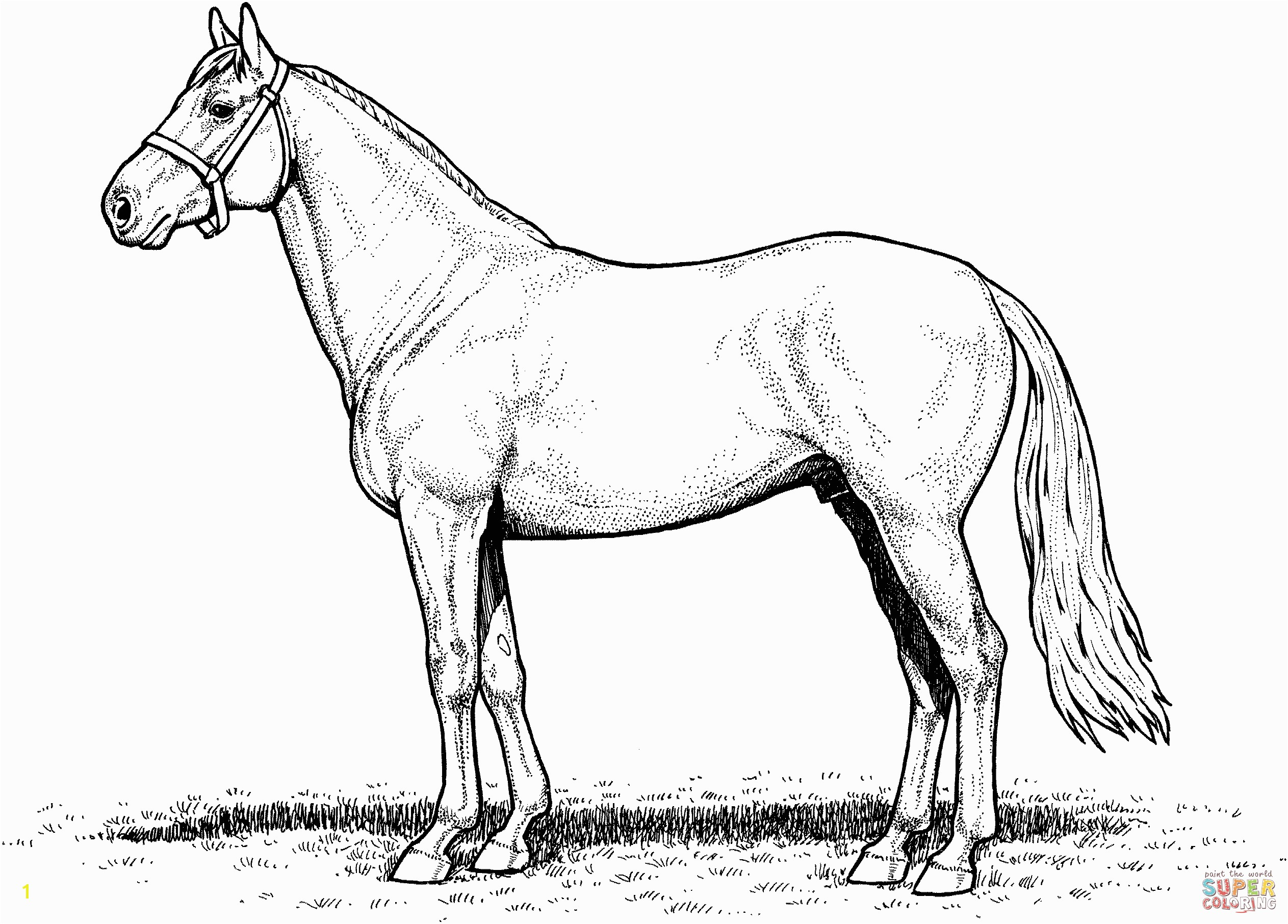 e of them is Free printable horse coloring pages for kids Description from intleadsolutions I searched for this on bing images