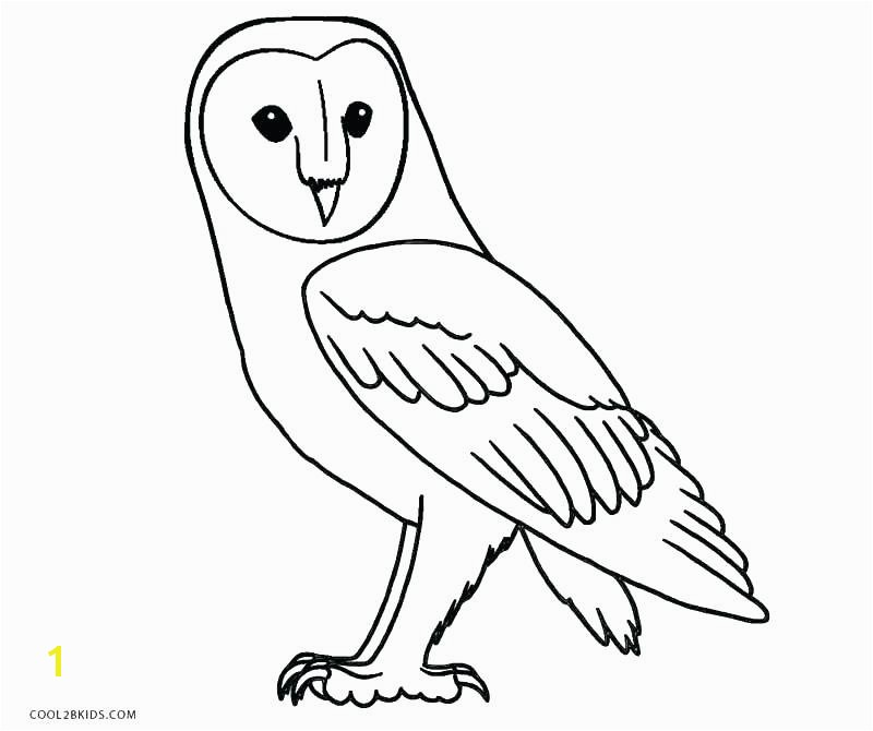 Cartoon Owl Coloring Pages Color Page Snowy Free Printable Valentine To Print