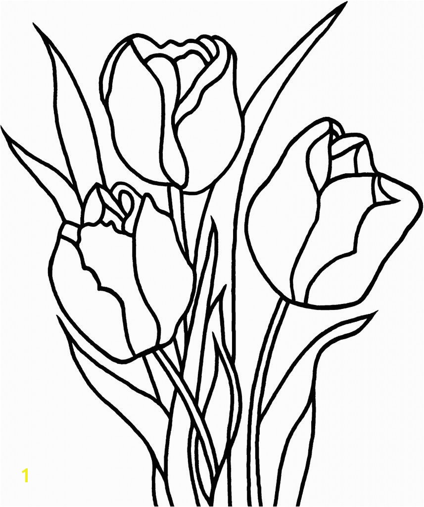 New Tulip Flower Coloring Sheet Free 9 h Free Tulip Coloring Pages With Printable