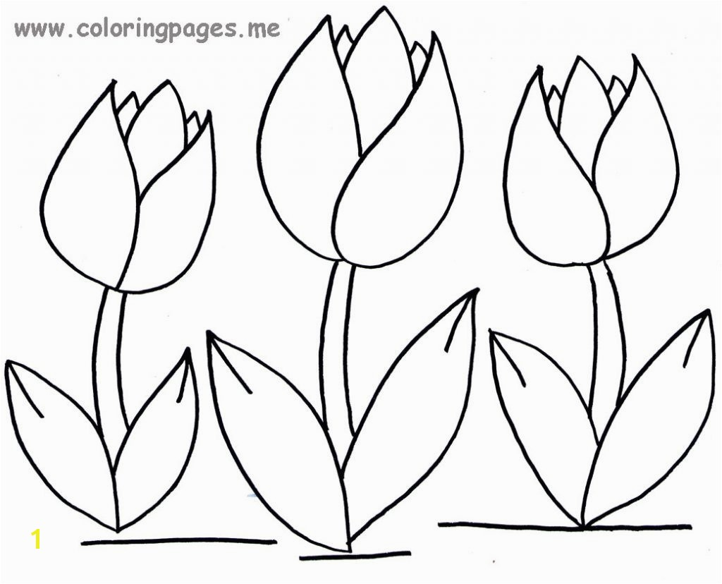 Tulip Coloring Pages All Regarding Page Flower Free Printable