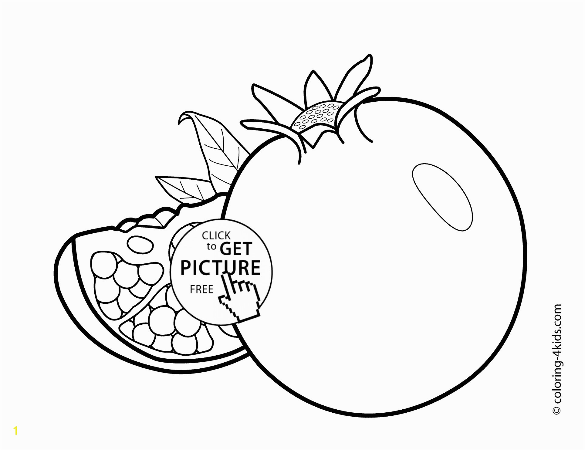 Coloring Pages Fruits And Ve ables For Kids Pomegranate Drawing At Getdrawings