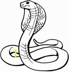 Snake cobra coloring page for kids and adults from Reptiles coloring pages Snake coloring pages