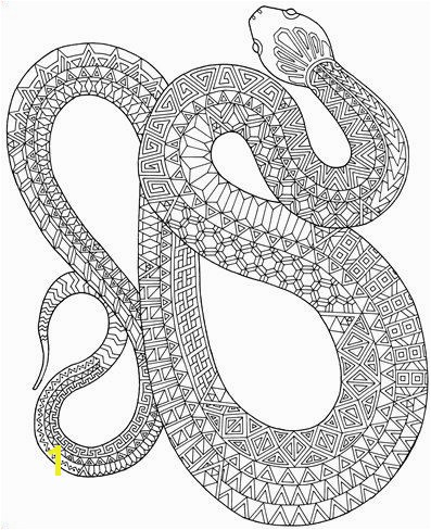 Zanimals Snake Coloring Page Adult Coloring Book от Edge Elfland