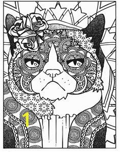Dover Creative Haven Grumpy Cat Hates Coloring 3 Adult Coloring Pages Pinterest