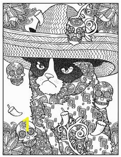 Dover Publications Creative Haven Grumpy Cat Hates Coloring Coloring Book … DOVER COLOR PAGES