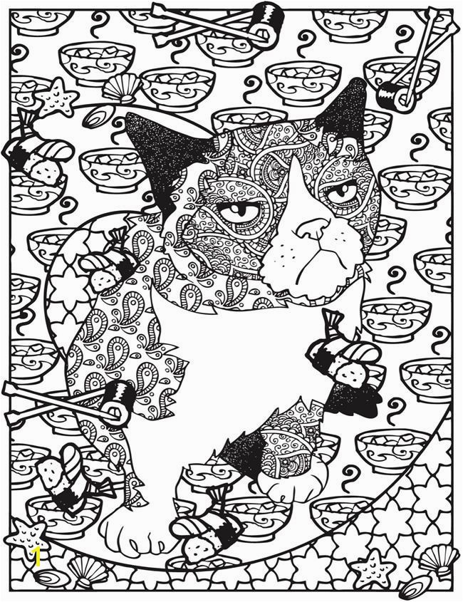 Grumpy Cat Coloring Pages Awesome 1958 Best Coloring Pages Pinterest Grumpy Cat Coloring