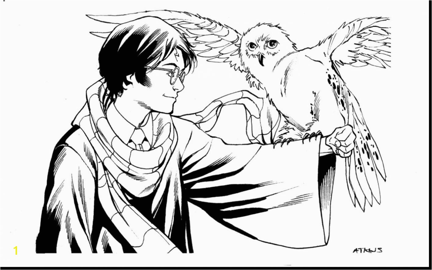 Free Harry Potter Coloring Pages 13 6638 And Page