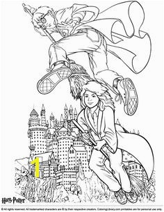Harry Potter coloring sheet Harry and Hermione flying on brooms