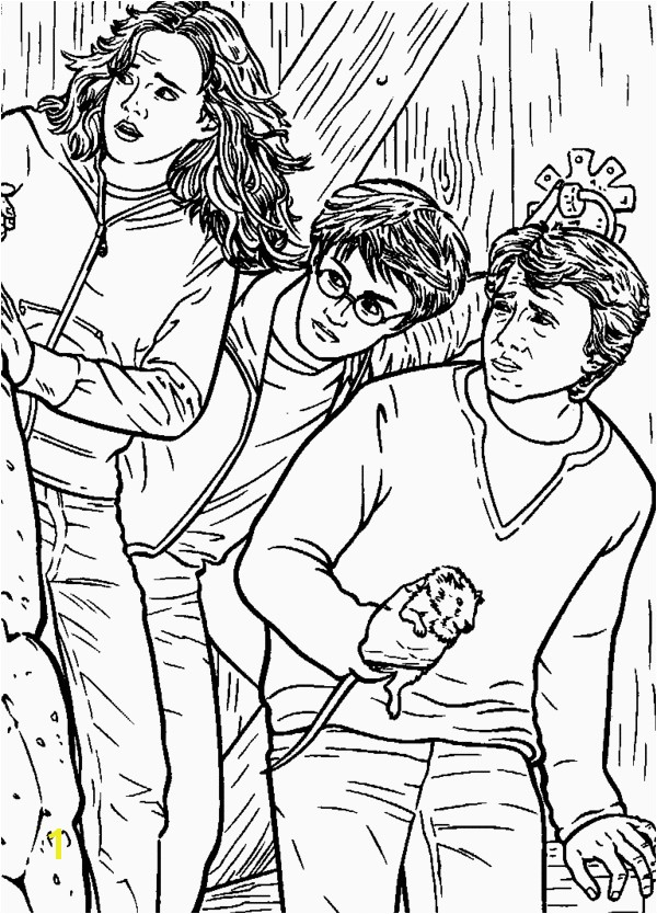 Harry potter coloring pages on coloring book info free harry ron