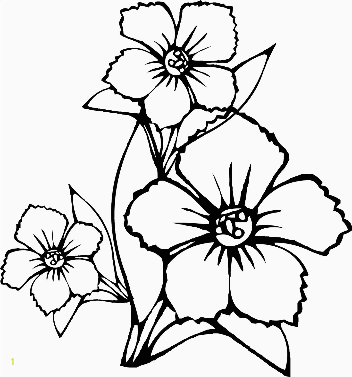 Hawaiian Flower Coloring Page California State Flower Coloring Page Coloring Pages Hawaiian
