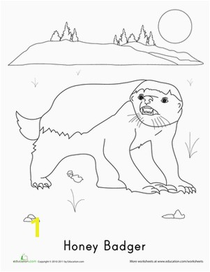 Honey Badger Coloring Page