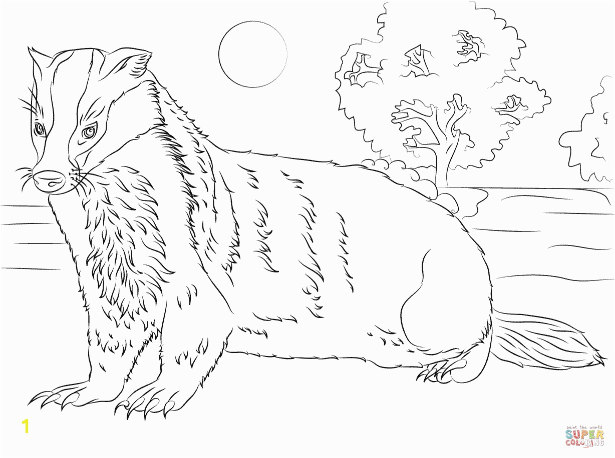 Unparalleled Honey Badger Coloring Page Free Printable Pages