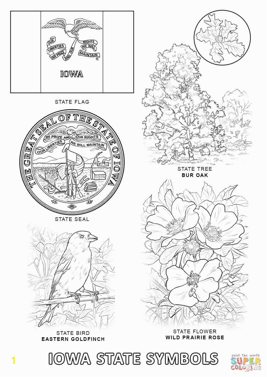 Iowa State Symbols Coloring Page Free Printable Pages With