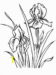 Iris coloring and printable page