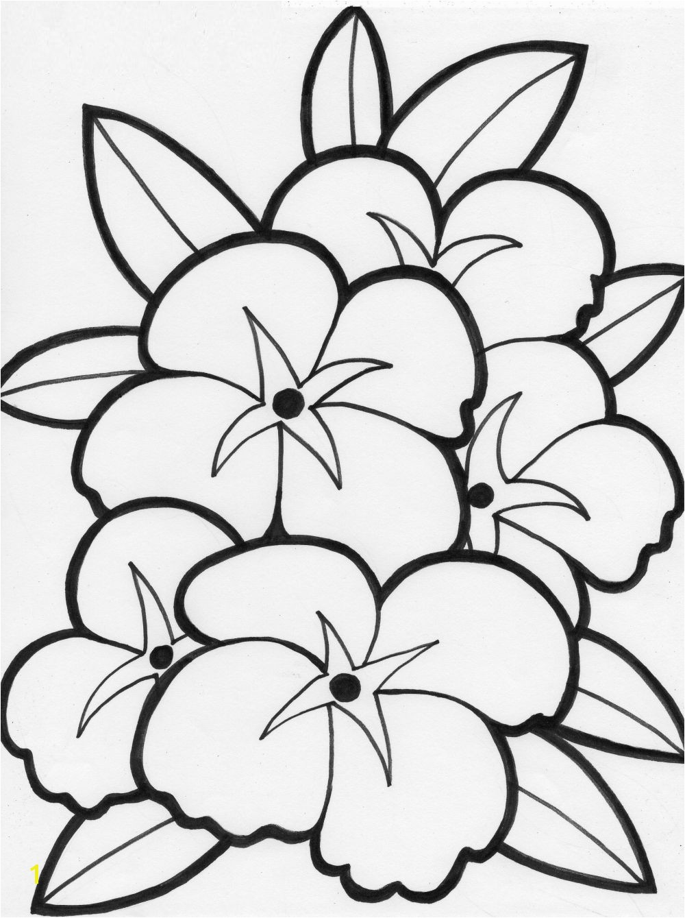 summer flowers printable coloring pages Free
