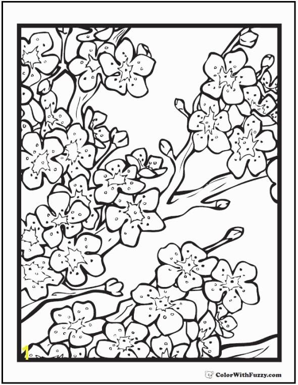 What a beautiful cherry blossom coloring page for adults