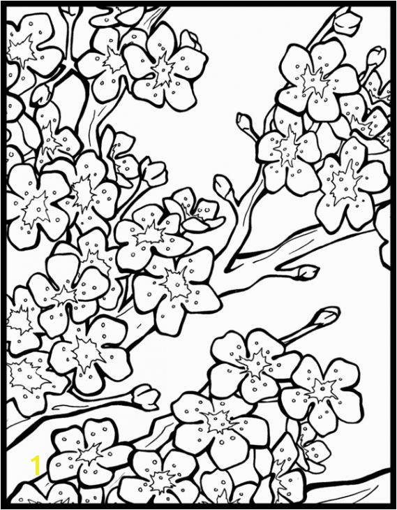 Free Cherry Blossom Coloring Page To Print Out