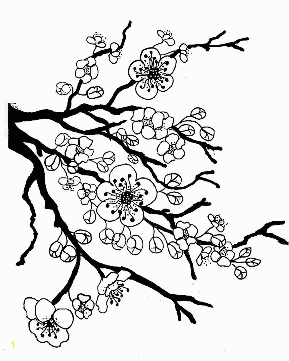 Japanese Cherry Blossom Flower Coloring Page