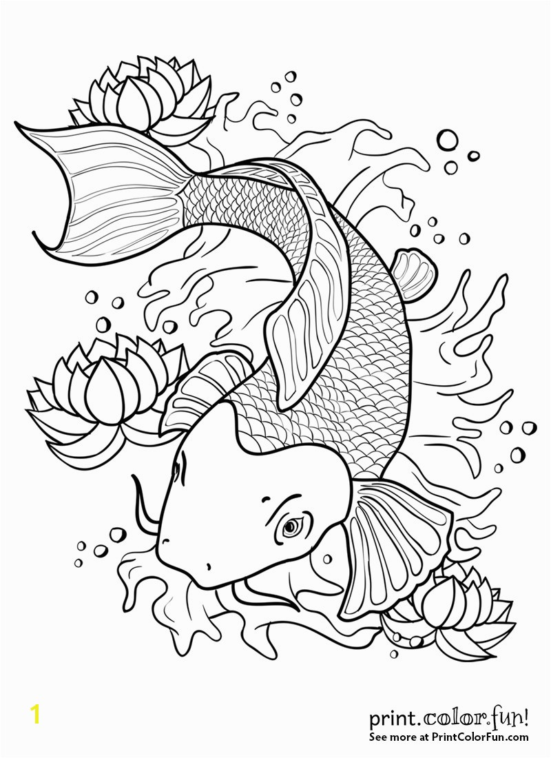 koi fish coloring sheet fish coloring pages for adults inspirational koi fish outline drawing at drawings fish coloring pages
