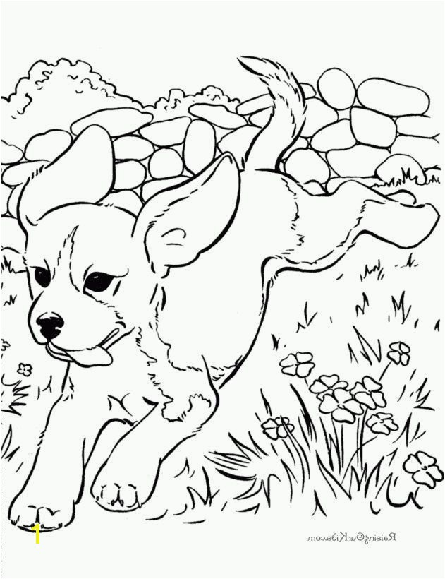 Joe Biden Coloring Pages New Joe Biden Coloring Pages Gallery