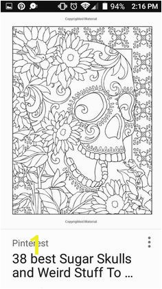 Creative Haven Day of the Dead Coloring Book amazing