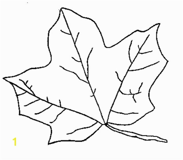 Leaf Coloring Pages The Sun Flower