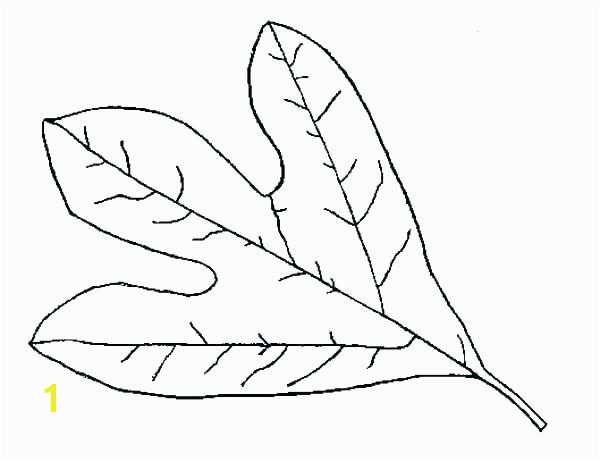 fall leaves coloring pages printable fall leaf coloring pages fall leaf coloring pages printable autumn leaves