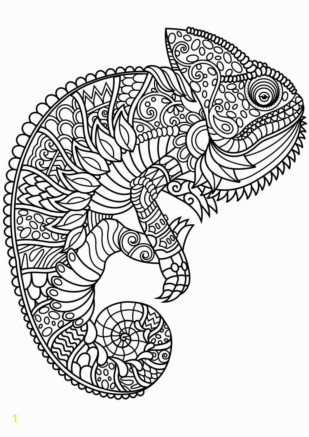 Unique Animal Mandala Coloring Pages