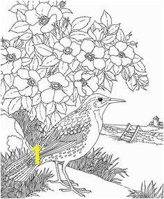 North Dakota Western Meadowlark Coloring Page