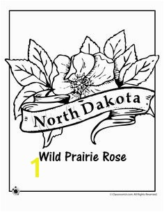 State Flower Coloring Pages North Dakota State Flower Coloring Page – Classroom Jr