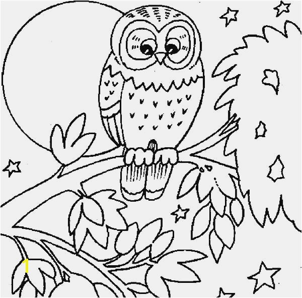 24 Tree Coloring Pages Picture 30 Fresh Graph Examples Owl In A Page