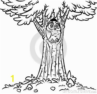 Owl tree fir coloring page cartoon illustration