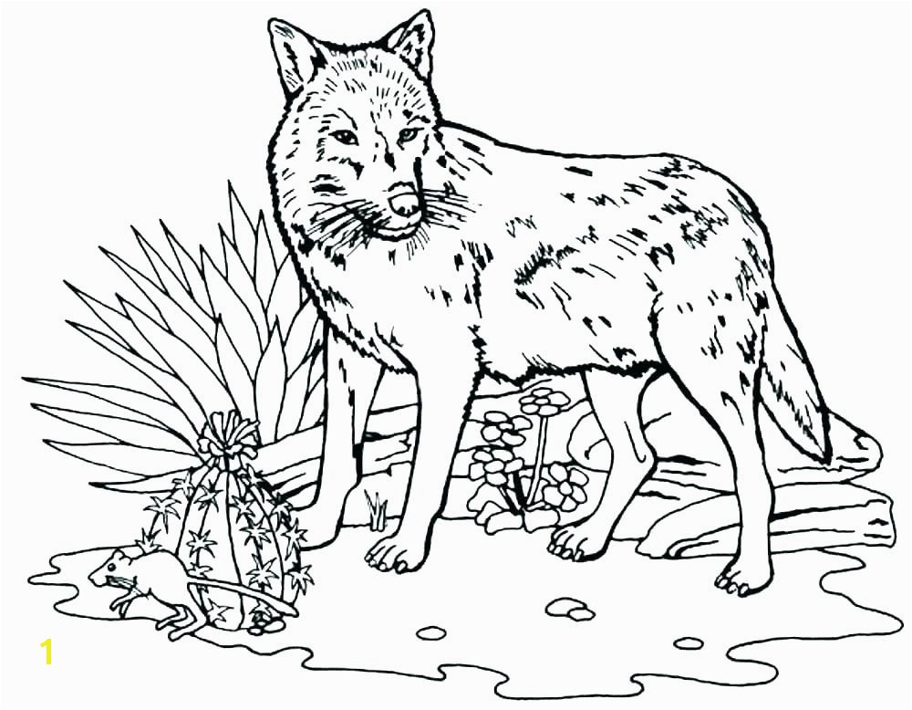 peter and the wolf coloring pages free wolf coloring pages peter and the wolf coloring pages
