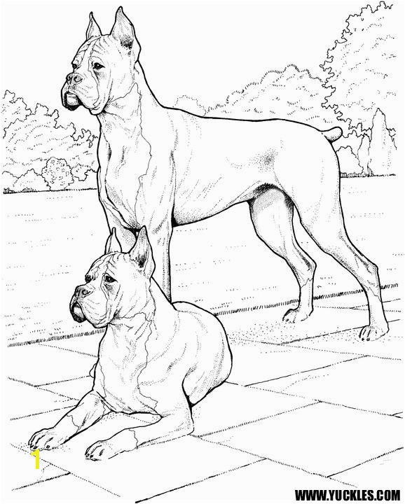 578x720 53 best coloring images on Pinterest Coloring books Draw and