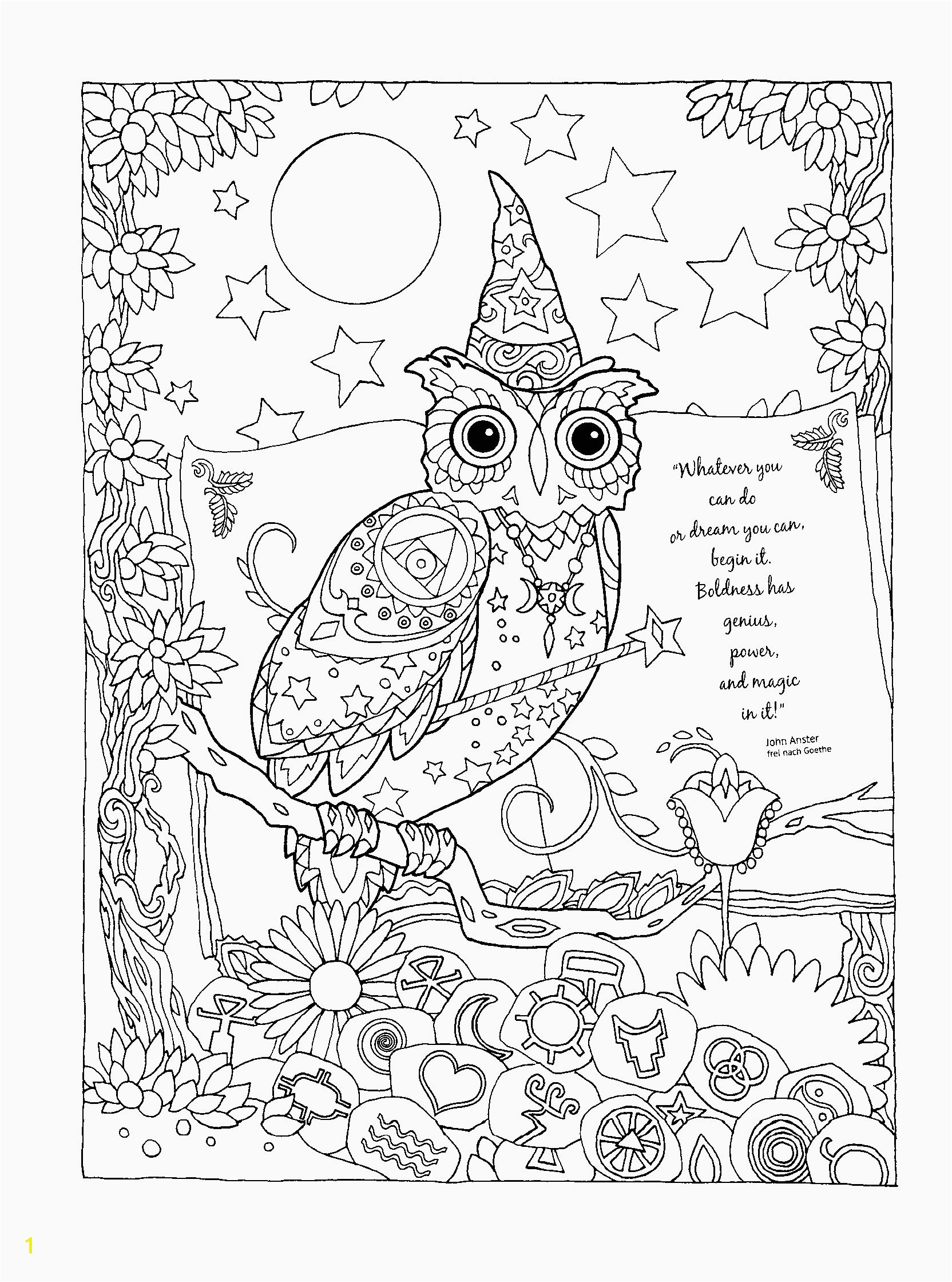 5612 Owl Color Pages Printable Coloring Pages Owls