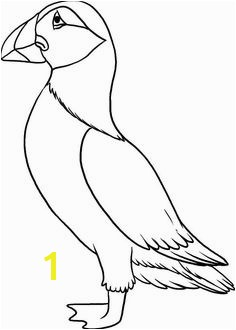 Puffin Coloring Pages