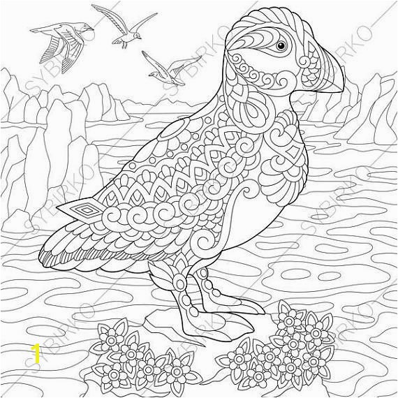 Puffin Coloring Pages Animal coloring book pages for Adults Instant Download Print