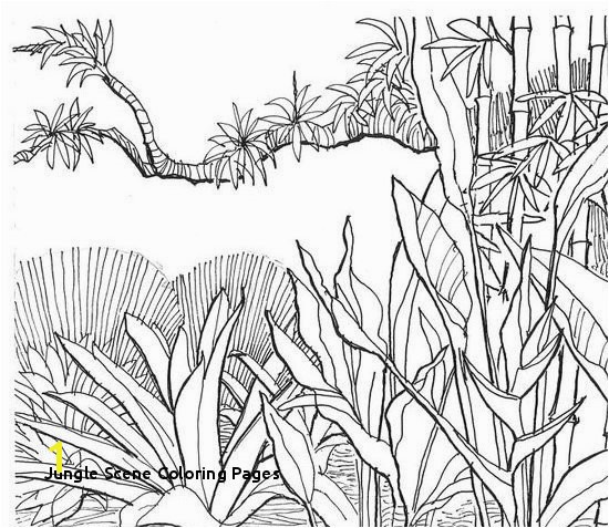 Jungle Scene Coloring Pages Tree Coloring Pages Unique S S Media Cache Ak0 Pinimg originals 0d
