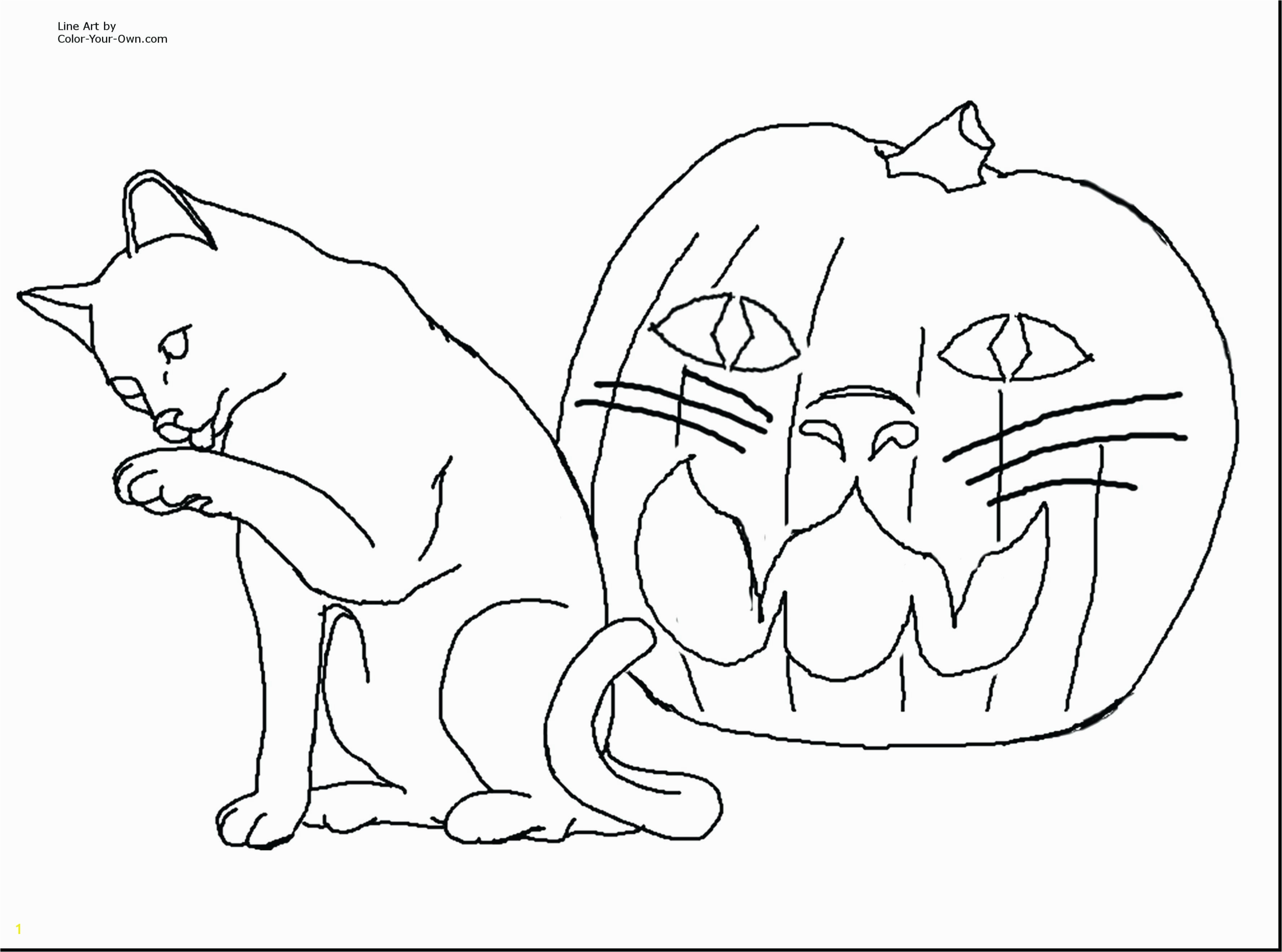 Realistic Cat Coloring Pages 2018 Coloring Pages Animals Realistic Katesgrove