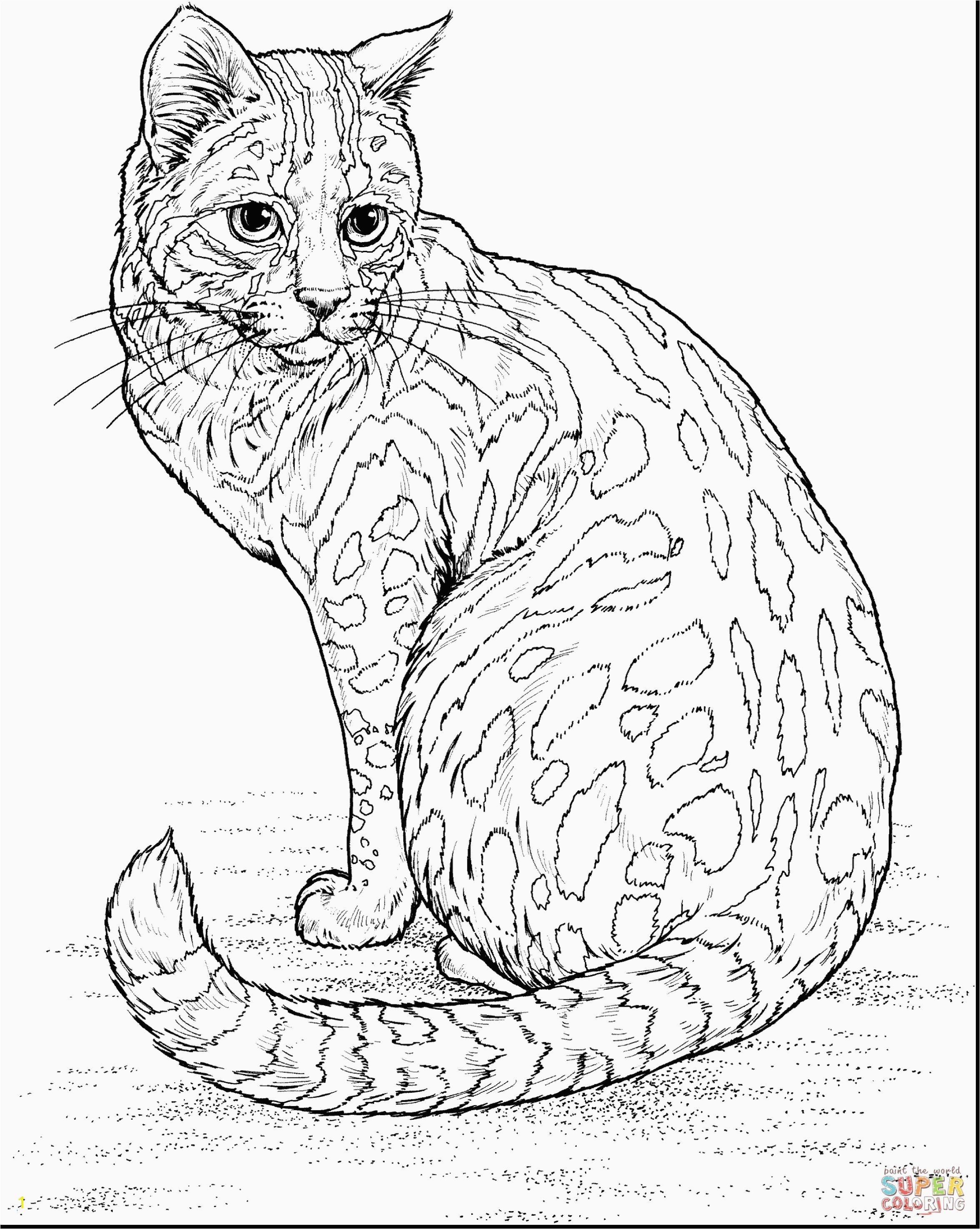Cute Cat Coloring Pages Beautiful Realistic Cat Coloring Pages Inspirational Best Od Dog Coloring