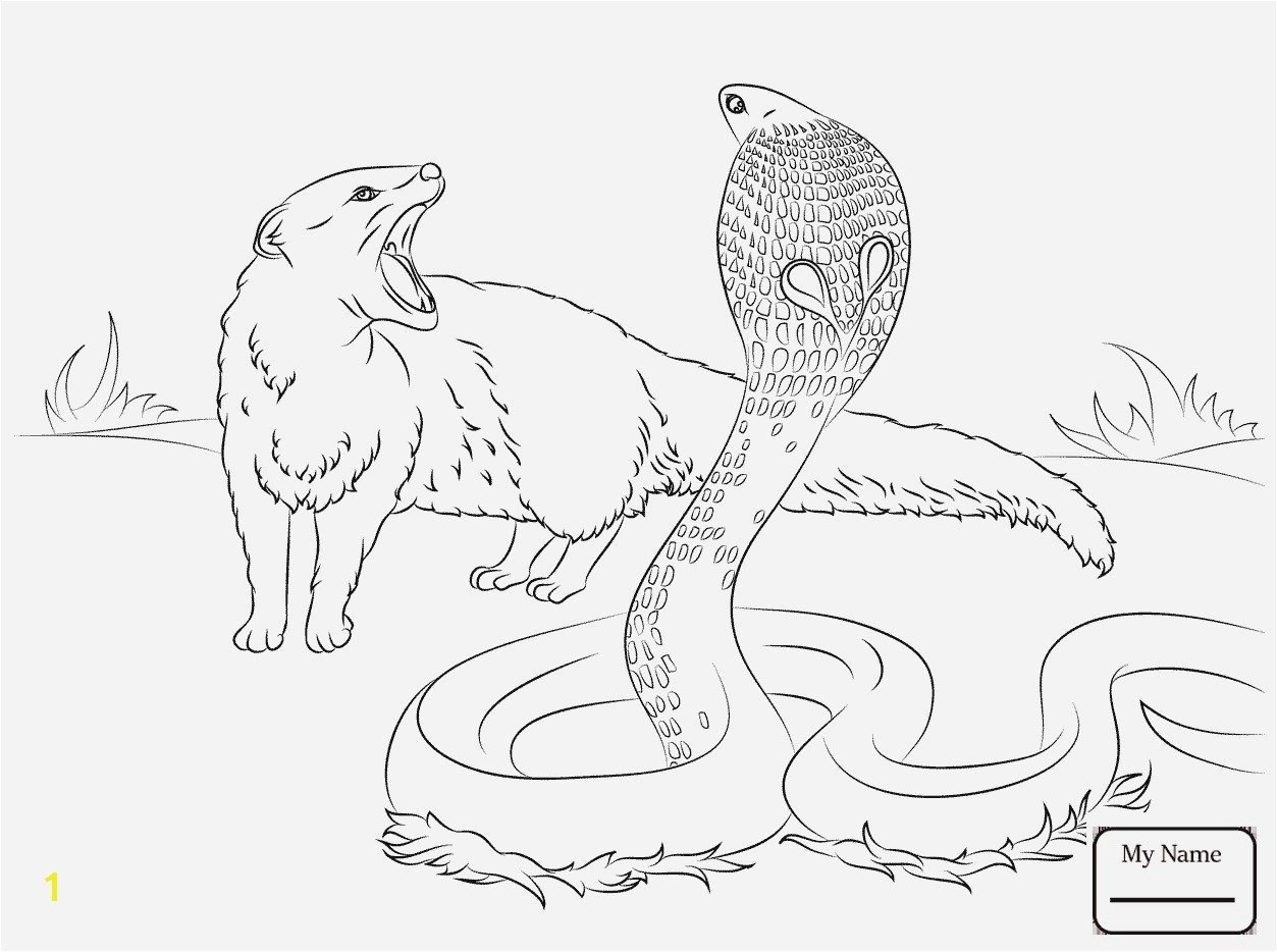 Printable Animal Coloring Book Pages Superb Cool Coloring Page Unique Witch Coloring Pages New Crayola Pages