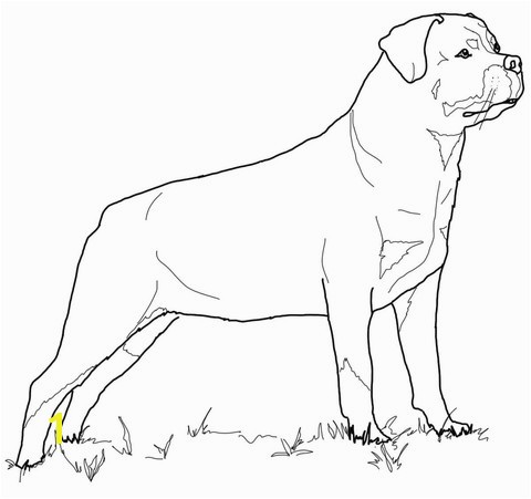 Rottweiler Puppies Coloring Pages Printable To Fancy Page Free Beautiful