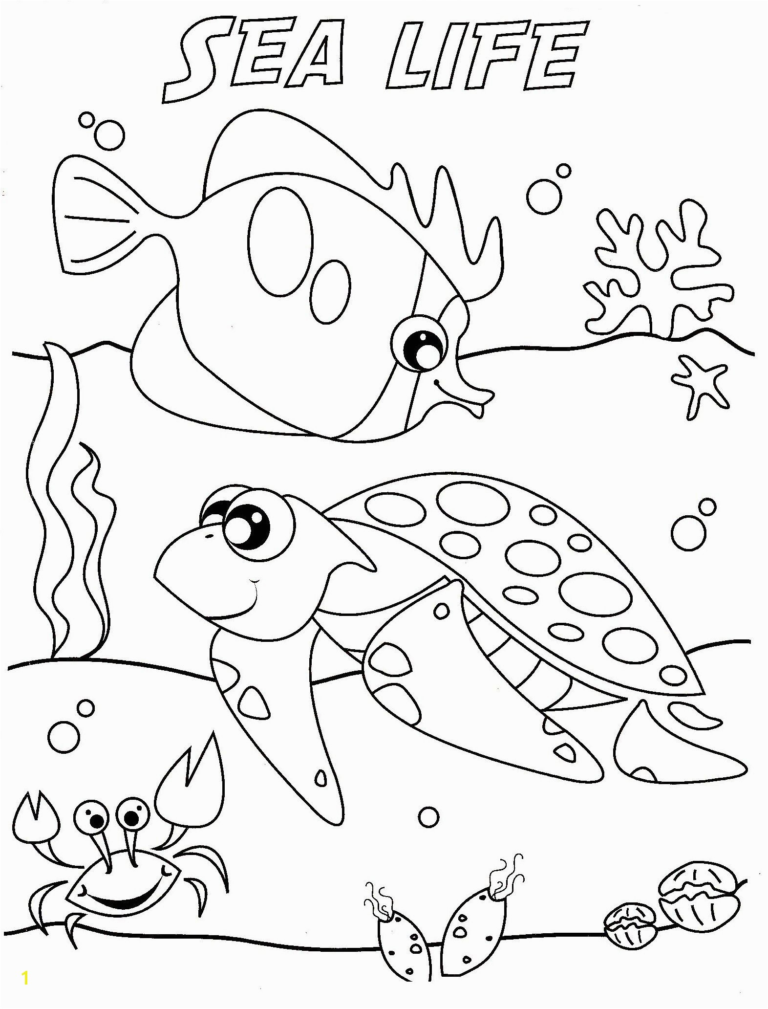 Ocean life coloring pages to and print for free