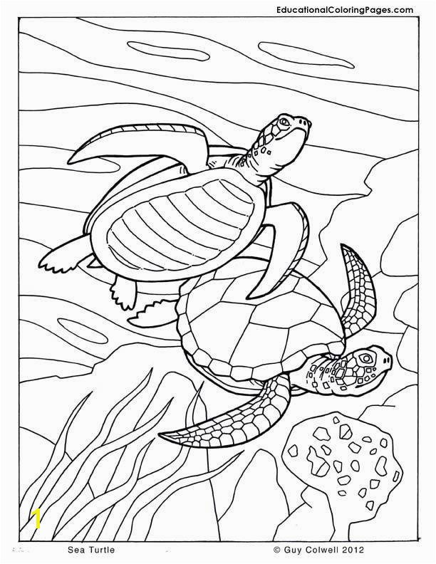 Saltwater Fish Coloring Pages Fresh New Od Dog Coloring Pages Free Inspiration Fish Coloring Pages